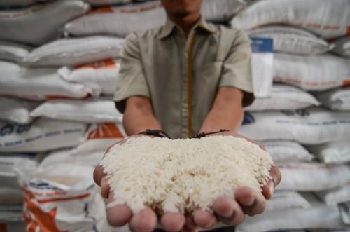 Ilustrasi Petugas menunjukan stok beras di Gudang Bulog Baru Cisaranten Kidul Sub Divre Bandung, Jawa Barat, Senin (16/10/2018). ANTARA FOTO/Raisan Al Farisi.