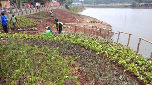 Naturalisasi Waduk Setu Babakan di Kelurahan Srengseng Sawah,