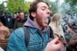 Kanada Legalkan Penggunaan Ganja