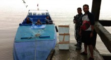 Lanal Dumai Gagalkan Penyelundupan Baby Lobster Seharga Rp1,5 Miliar