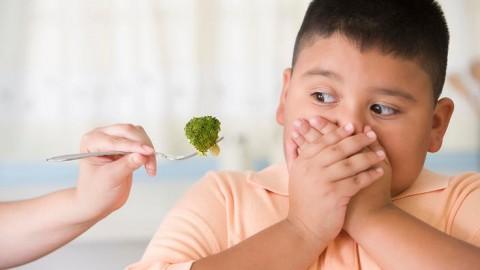 Benarkah Anak yang Pilih-pilih Makanan Tergolong Pintar?