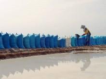 Produksi Garam di Probolinggo Melimpah