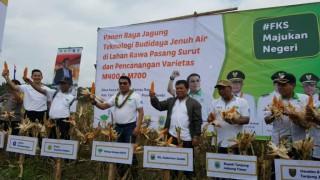 Memanfaatkan Teknologi untuk Tingkatkan Produktivitas Pertanian