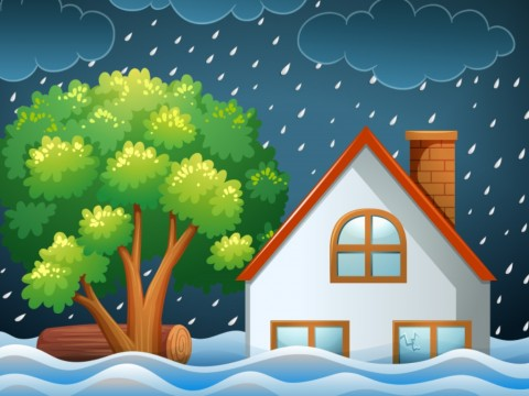 275 KK di Solok Terdampak Banjir