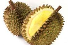 Pihak Sriwijaya Air Minta Maaf pada Steven & Coconut Treez