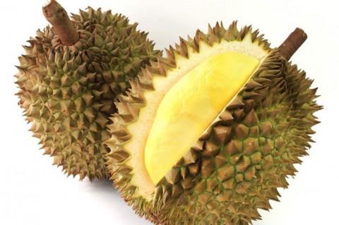 Pihak Sriwijaya Air Minta Maaf pada Steven & Coconut Treez Terkait Durian