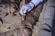 Arkeolog Temukan Koleksi Langka Mumi Kucing di Mesir