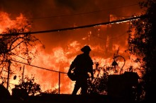 Korban Tewas Kebakaran Hutan California 42 Orang
