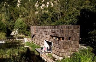 Perpustakaan di Tengah Hutan yang Bikin Kerasan