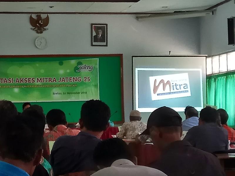 Bank Jateng Cabang Brebes sosialisasi program Kredit Mitra Jateng 25 di Aula Dinas Pertanian dan Ketahanan Pangan, Kabupaten Brebes, Jawa Tengah, Jumat, 16 November 2018. (Medcom.id/Kuntoro Tayubi).