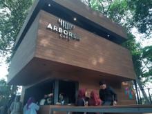 Melepas Penat di Arborea, Kafe Asri di Kawasan Hutan Jakarta