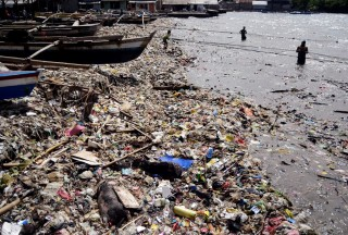 Nekropsi Ungkap Sampah Plastik Ancaman Utama Biota Laut