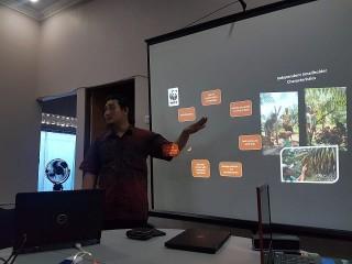 WWF Arahkan Petani Kelapa Sawit Sintang Tembus RSPO