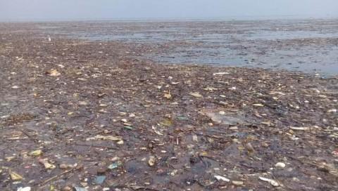 10 Ton Sampah Cemari Kepulauan Seribu