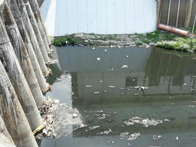 Sampah di tanggul atau talut Kali Pepe, pintu air Demangan