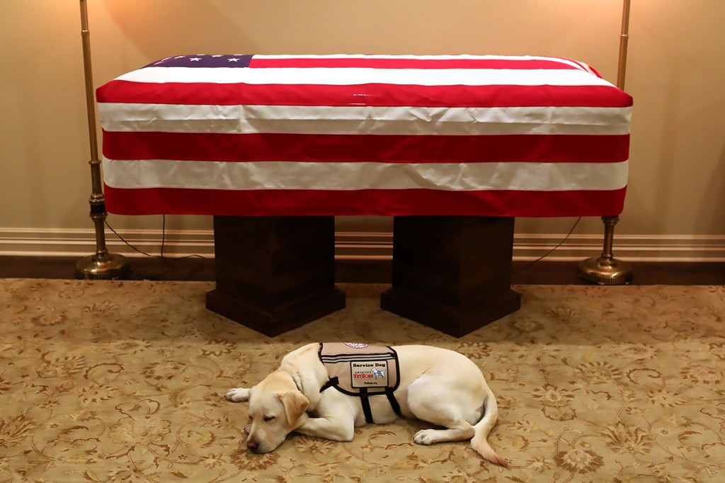 Sully, Anjing yang Temani Bush Hingga Akhir Hayatnya