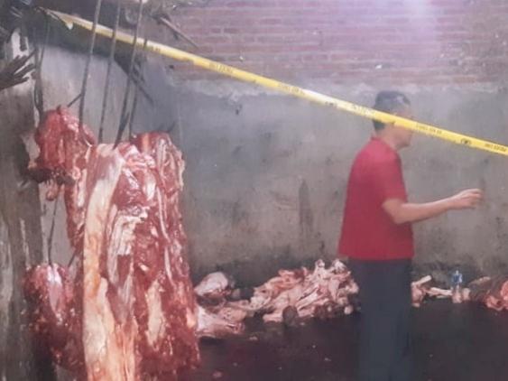 Tempat pemotongan hewan di kawasan Desa Seketi, Kecamatan Balongbendo, Sidoarjo, Jawa Timur, disegel karena dugaan praktik gelonggongan sapi. Istimewa
