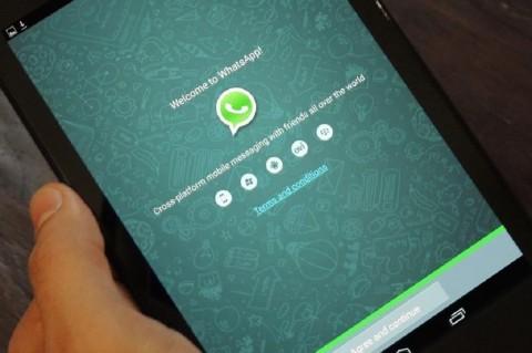 WhatsApp Android Mulai Dijajal untuk Tablet