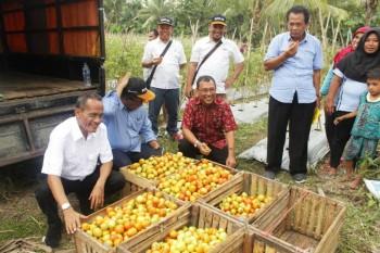 SOLID, Upaya BKP Kementan Berdayakan Petani Miskin