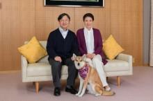 Putri Masako Bersiap Jadi Permaisuri Jepang