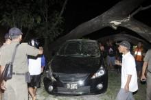 Pohon Tumbang Menimpa Mobil di Jaksel