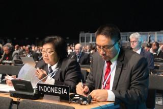 Menteri Siti Pamerkan Strategi Penurunan Emisi Indonesia di COP 24
