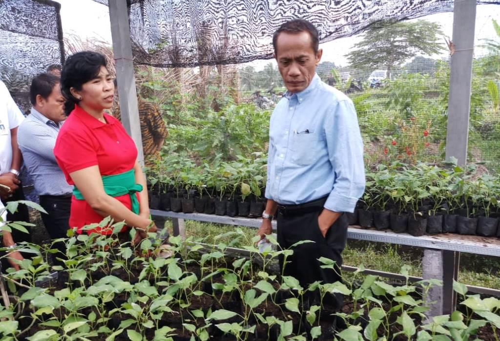 Kepala BKP Kementan Agung Hendriadi (Foto:Dok.Kementan)