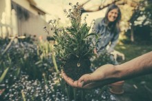 Manfaat Berkebun untuk Anak Muda