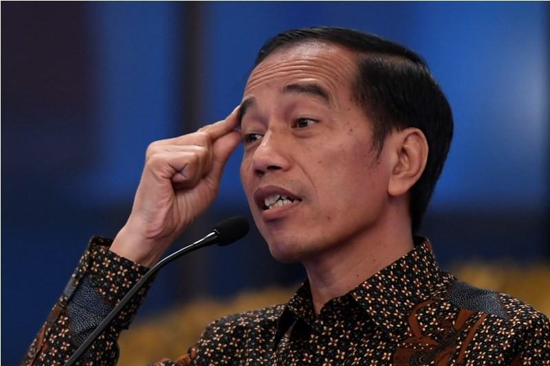 Presiden Joko Widodo. Ant