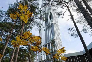 Pusat Kebudayaan di Tengah Hutan