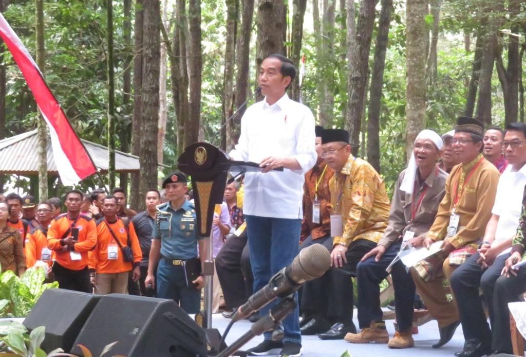 Presiden Jokowi pada acara penyerahan SK Perhutanan Sosial di Hutan Pinus Jambi: (MI/Solmi)