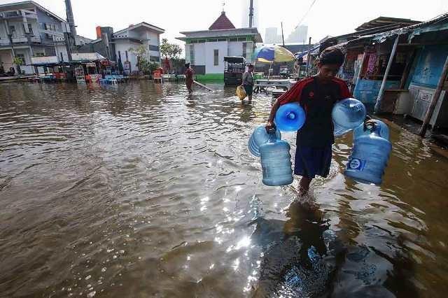 Ilustrasi banjir rob--Antara/Rivan Awal Lingga.