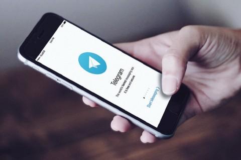 Telegram Tambahkan Alat Khusus untuk Polling