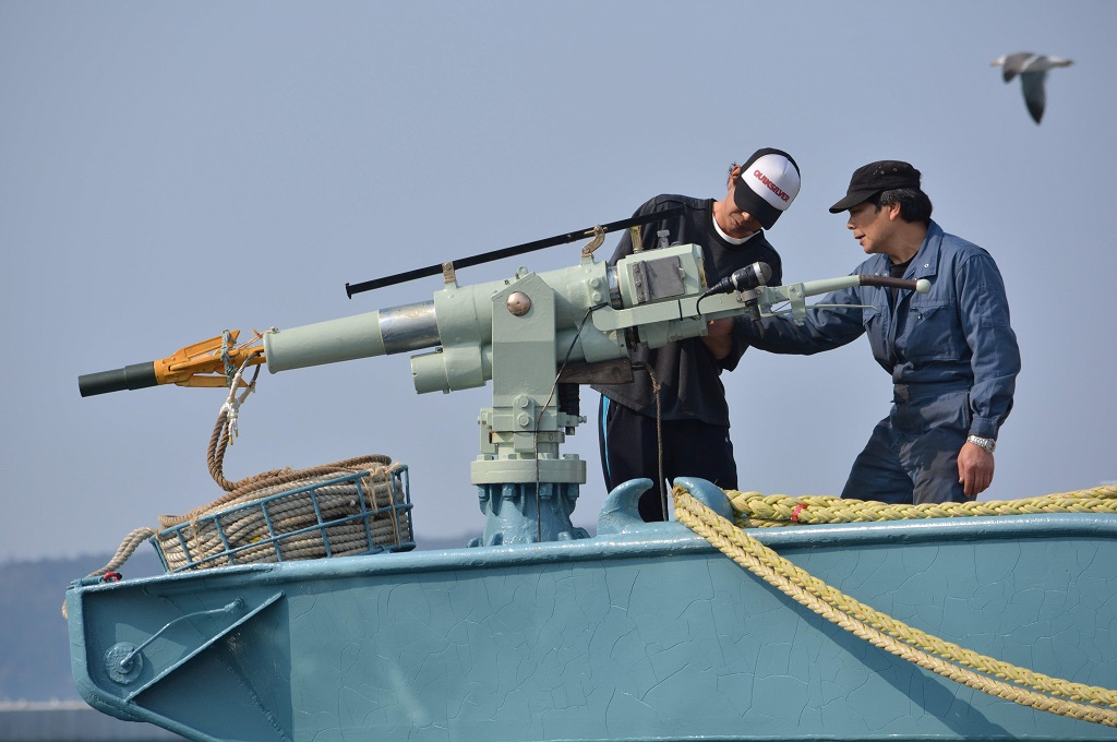 Kru kapal penangkapan ikan paus memeriksa harpun pelabuhan Ayukawa, Jepang, 10 September 2018. (Foto: AFP/KAZUHIRO NOGI)