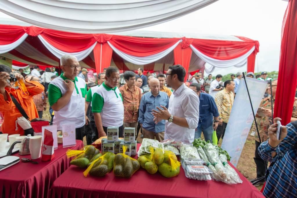 Menteri Koordinator Bidang Perekonomian, Darmin Nasution di sela-sela peluncuran program Santripreneur dan Petani Muda, Medcom.id/Eko Nordiansyah.