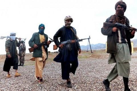 Taliban Tolak Tawaran Dialog Damai Afghanistan