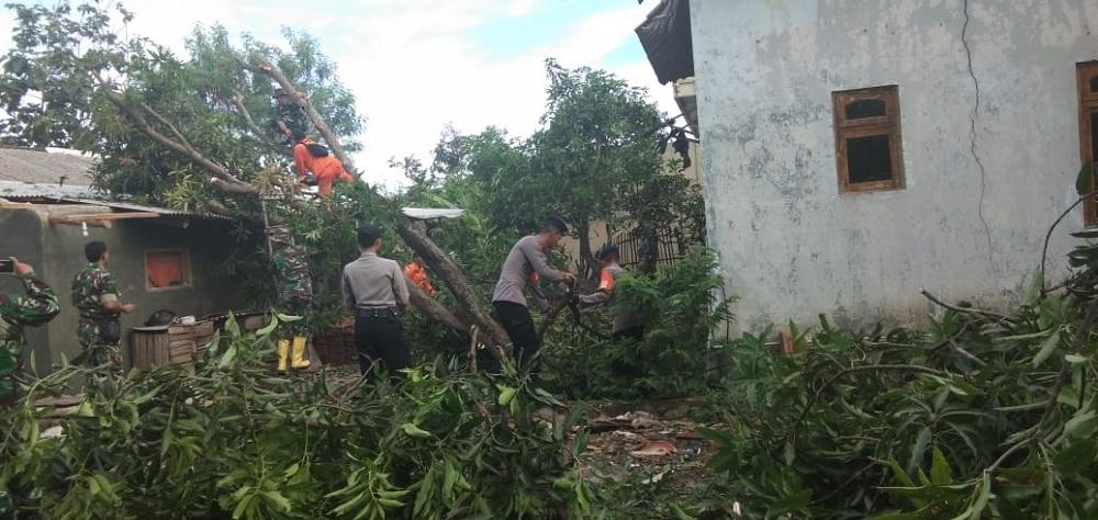 Sejumlah petugas gabungan membantu membesihkan puing akibat angin puting beliung yang terjadi beberapa waktu lalu di Cirebon, Jawa Barat, Senin, 31 Desember 2018. Medcom.id/ Ahmad Rofahan.