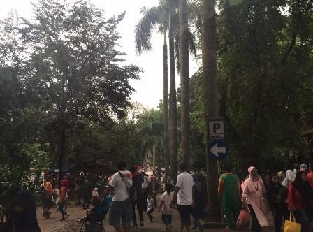Situasi Kebun Binatang Ragunan, Jakarta. Selasa (1/1/2019). Medcom.id/Kumala Anggita