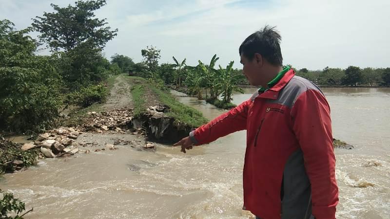 Warga menunjukkan tanggul yang jebol di Desa Panguragan Wetan.