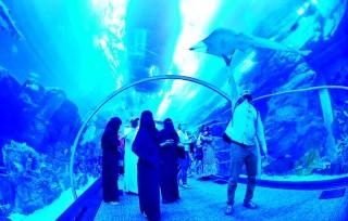 Jadi 'Aquaman' dalam Mall of Dubai