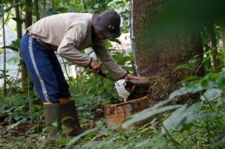Kemenperin Gunakan Mesin Lokal Campur Karet ke Aspal