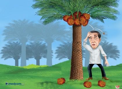 Jokowi <i>Ketiban</i> Sawit