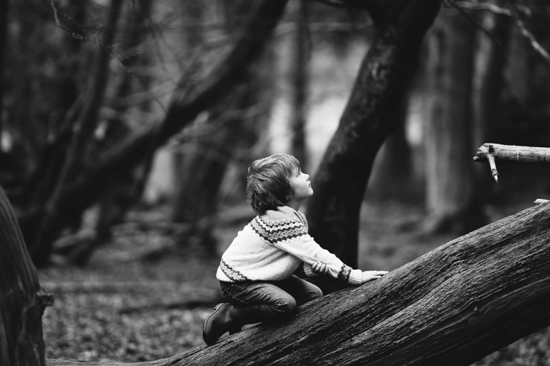 Anak-anak yang memiliki hubungan yang lebih dekat dengan alam bisa lebih sedikit murung (Foto Ilustrasi: Annie Spratt/unsplash.com)