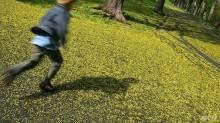 Populasi Menurun, Norwegia Butuh Lebih Banyak Anak
