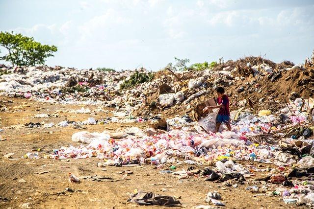 Tidak berhenti pada bencana (banjir), plastik juga membahayakan makhluk hidup lainnya seperti tanaman di darat dan biota air. (Foto: Hermes Rivera/Unsplash.com)