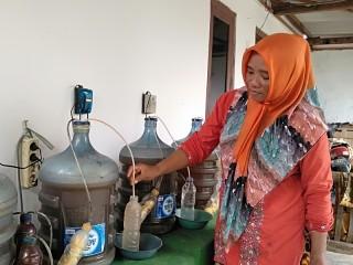 Perempuan Sumenep Pengembang Pupuk Cair Ramah Lingkungan