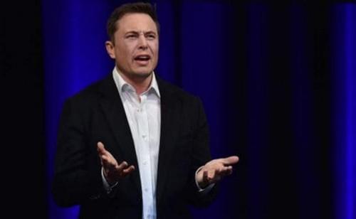 CEO Tesla Elon Musk (PETER PARKS/AFP)