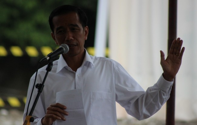 President Joko Widodo (Photo:MI/Amiruddin)