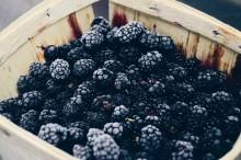 Manfaat Kesehatan yang Tertuang dari Blackberry