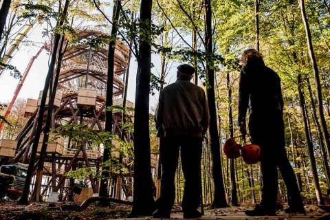 Menara Observasi Ramah Difabel di Tengah Hutan